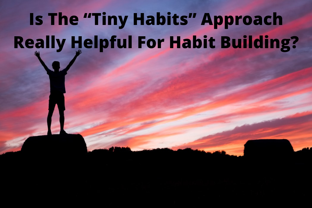 """Is The """"Tiny Habits"""" Approach Really Helpful For Habit Building?"""